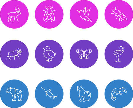 illustration of 12 animals icons line style. Editable set of humming bird, fly, poultry and other icon elements.