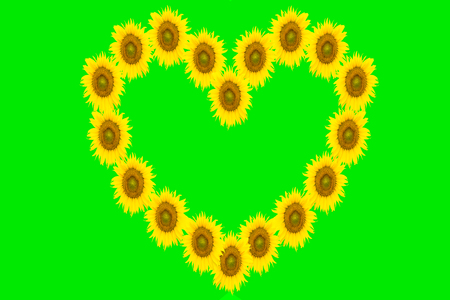 yellow heart: yellow heart on green background for your design