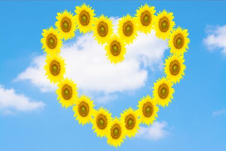 yellow heart: yellow heart