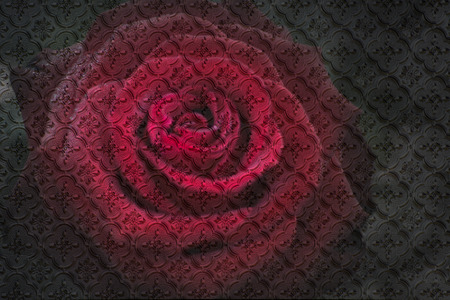 Red rose as pattern
