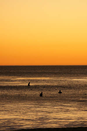 surfers: surfers in sunset