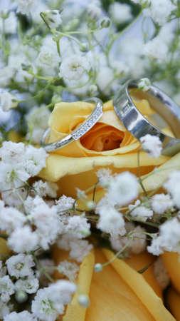 Wedding rings Archivio Fotografico - 7443670