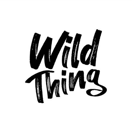 Wild thing- paint brus text. Good for t-shirt print, flyer, poster design, mug, and card.
