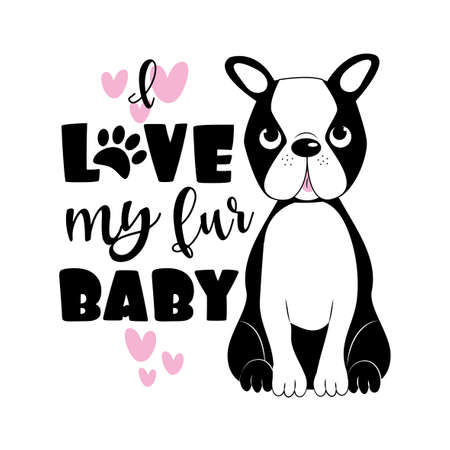 I Love my fur Baby - and Cute Boston Terrier. Good for poster, banner, greeting card, textile print, and gifts design. Ilustrace