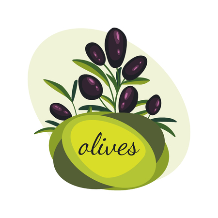 Black olive branches. Banner design for olive oil, natural cosmetics