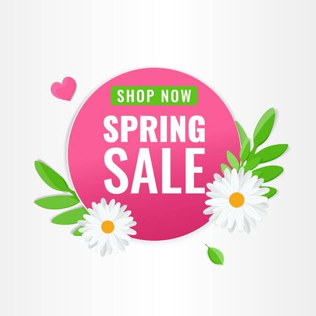 Circle pink banner for spring sale with chamomile flowers and green leaves. Blooming flowers promotion concept. Vector stock image