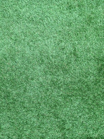 Background from texture of grass