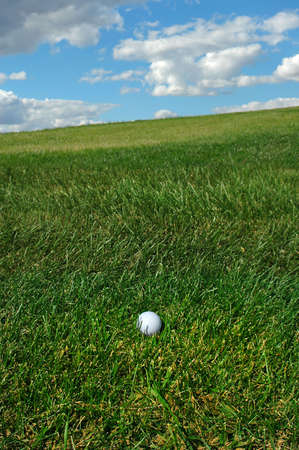 Golf ball in the rough Stock Photo - 548780