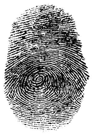 Detailed fingerprint with clipping Path Stock Photo - 554747