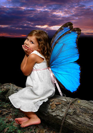 Little fairy with buttlerfly wings over a daybreak background.