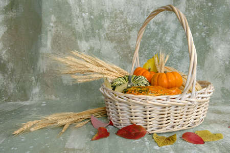 Harvest produce in a basket over textured background photo