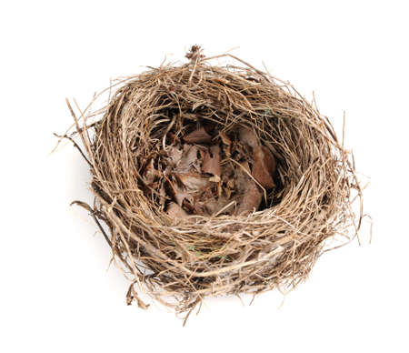 Empty birds nest over a white background