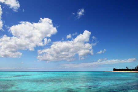 Tropical Beach with coral reef on a bright day Stock Photo - 7903518