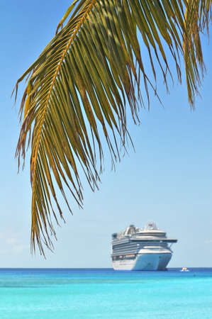 bahamas: Palm tree and cruise ship in background - With selective focus