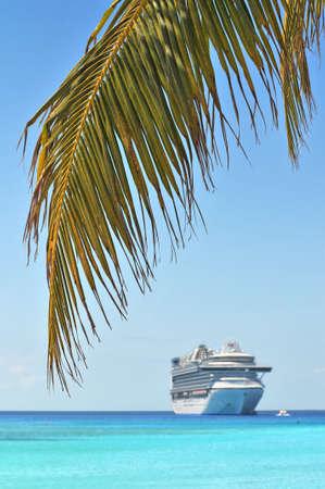 bahamas: Palm tree en cruise schip in achtergrond - met selectieve aandacht