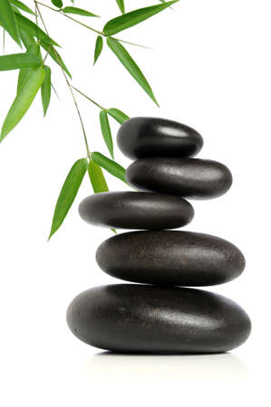 pile of leaves: Five black stones balanced with bamboo leaves in background