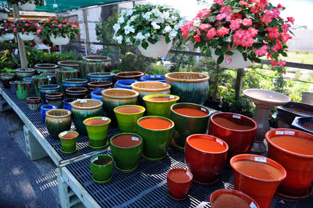 Flower Pots for sale in nursery photo