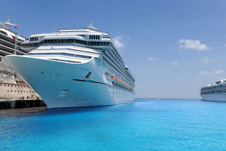 Cruise ships docked in tropical port during sunny day photo