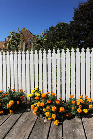 White wooden fence in home garden during sunny day photo
