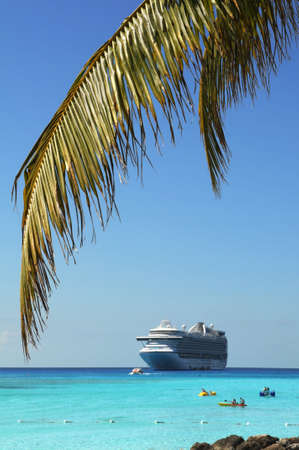 caribbean island: Palm tree branch and cruise ship in background - Selective focus on foreground