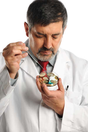 Hispanic scientist working with bacteria on petri dish isolated over white background Stock Photo - 15705811