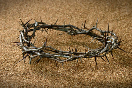 A crown of thorns on sandy background Reklamní fotografie - 16713120