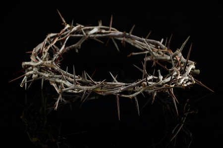 thorns  sharp: Crown of thorns over a dark background Stock Photo