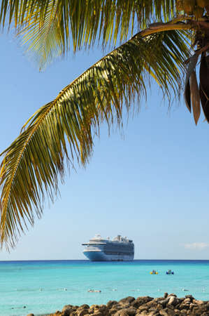 caribbean cruise: Palm tree and cruise ship in tropical waters