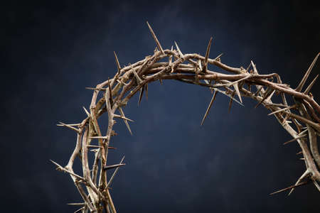 thorns  sharp: Crown of thorns over dark blue background