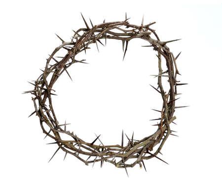 crown of thorns: Corona de espinas aisladas sobre fondo blanco Foto de archivo