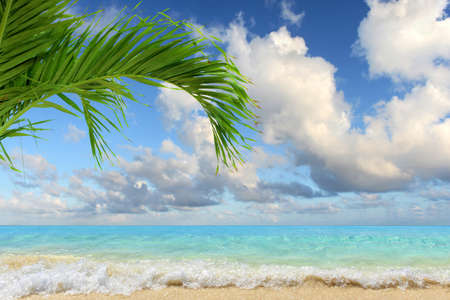 Caribbean beach with clear waters and clouds in background
