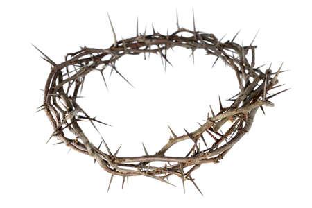 corona de espinas: Corona de espinas aisladas sobre fondo blanco Foto de archivo