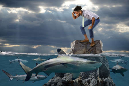 Young African American businessman standing on rock surrounded by sharks Stock Photo