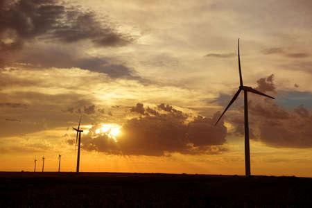 Oliennes au coucher du soleil sur une ferme du Kansas Banque d'images - 69969176