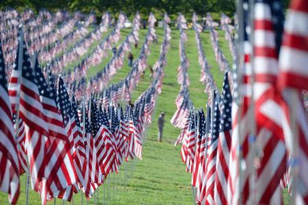 Saint Louis, MO - 11 Septembre, 2016: Plus de 7000 drapeaux avec nom, photo et étiquette du soldat chien tué en défendant la vague des États-Unis en dehors du musée d'art de Saint-Louis à Saint Louis, Missouri Banque d'images - 69962109