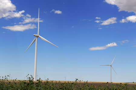 Wind turbines in open field with sunflowers in foreground