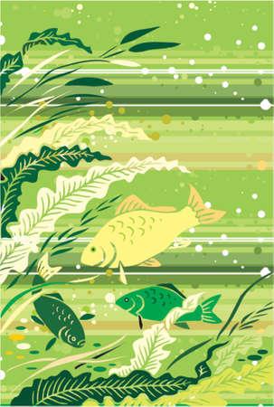 river fish: River Fish vector