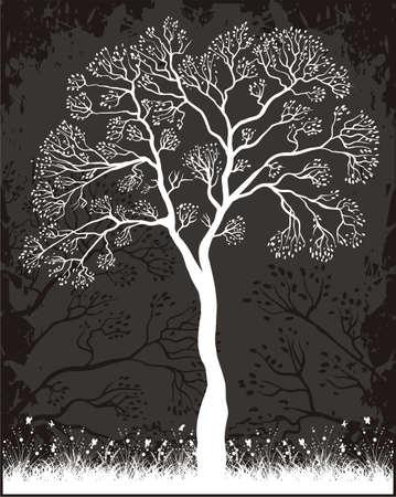 patterns vector: Tree