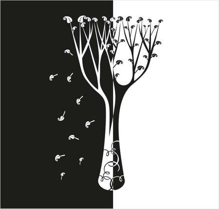 fall leaves on white: Tree with flying leaves, black and white. Illustration