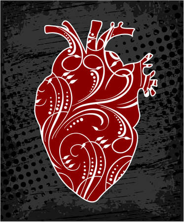 Anatomical human heart, drawing in cartoon style. Realistic red heart, illustration.