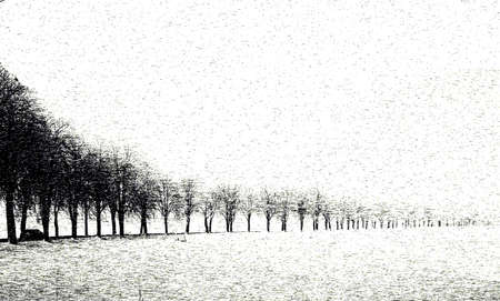 picturesque: A avenue in the wintertime  A car driving along this road  The photo ist picturesque alienated