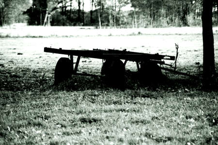 follower: A handcart or follower stands on a meadow at the edge of the forest