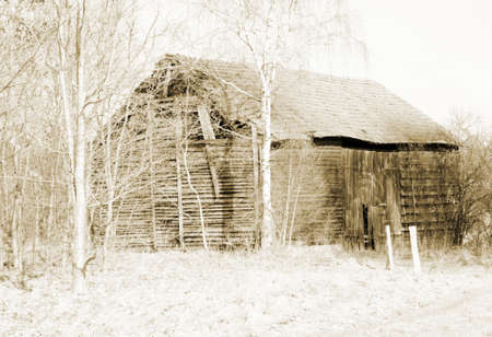 disintegrating: The photograph of a disintegrating barn at an edge of the forest                  Stock Photo