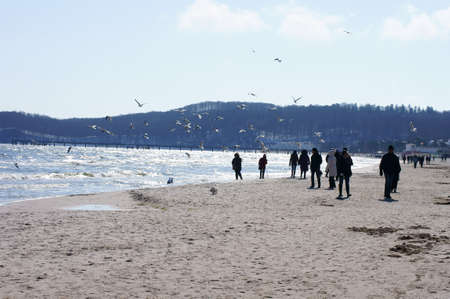 baltic people: Binz, Mecklenburg Western Pomerania  Germany � April 02: People walk along the beach of the seaside resort Binz and feeding gulls on April 02, 2013 in Binz. Binz is a famous seaside resort at the Baltic sea in Germany since 1885.