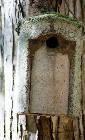 The photograph of a small bird house, which was hung on a tree                   Stock Photo