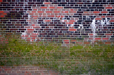 locations: The photograph of a striking wall with remains of algae and repair locations.