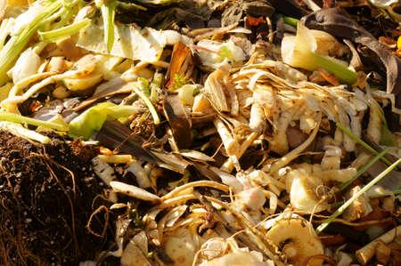 desechos organicos: El primer plano de un mont�n de humus en un jard�n con los residuos org�nicos de hortalizas y frutas tazones.