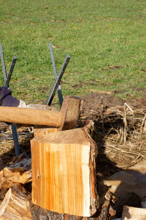 splitter: A man with a log splitter splits firewood for the stove.