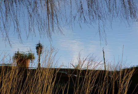 slightly: A lantern and branches of a willow reflected in a slightly rippled water surface. Stock Photo