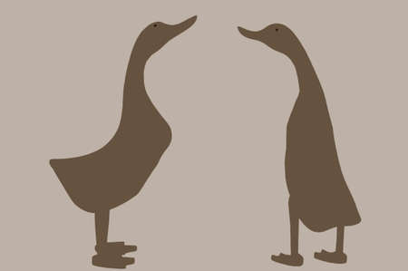upright: The illustration and the outline of two upright standing geese. Stock Photo